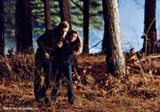 1x17-Let-The-Right-One-In-stefan-and-elena-11121127-500-352-1-