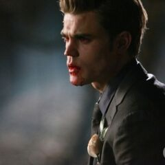 Stefan with blood.
