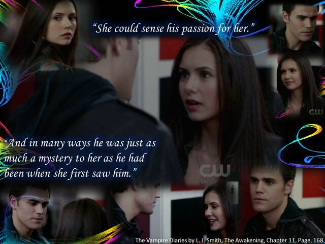 File:When they first met Stelena quotes from book.png.jpg