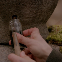 Freya's blood used for the immortality serum