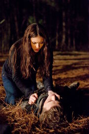 TVD-Let-the-Right-One-In-the-vampire-diaries-tv-show-11412093-720-1080