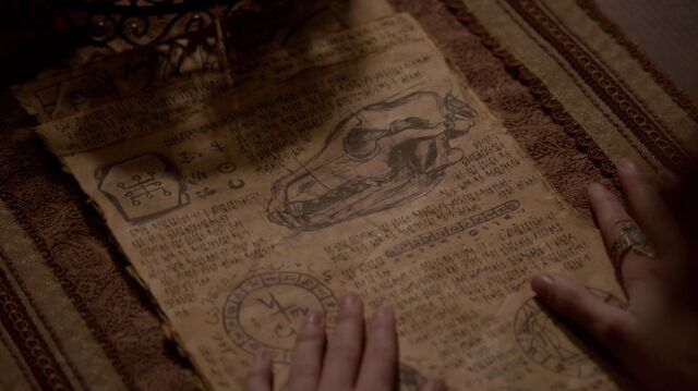 File:Esther's Grimoire TO1x21.jpg