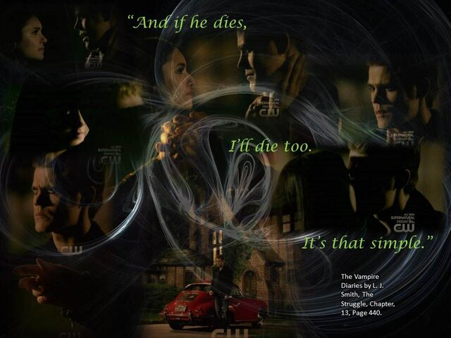 File:The Vampire diaries quotes from book the last day.jpg