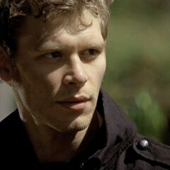 Niklaus after breaking the hybrid curse
