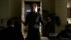 007-tvd-2x10-the-sacrifice-theoriginalfamilycom