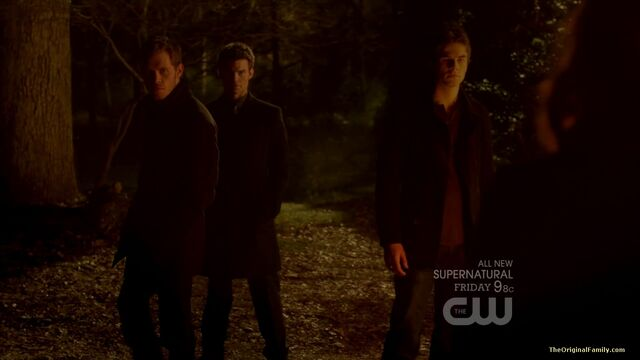 File:152-tvd-3x15-all-my-children-theoriginalfamilycom.jpg