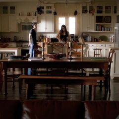 Same view. Behind the table is the kitchen island, Elena is behind it. Behind her is a window on the right side of the house.