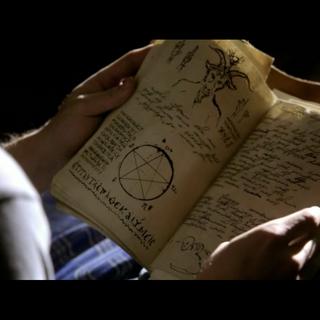 Jeremy reading the journal.