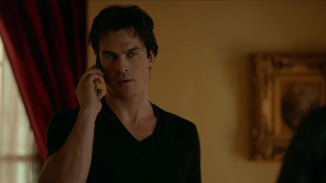 File:713-017-Damon.jpg