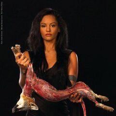 Persia's PETA poster