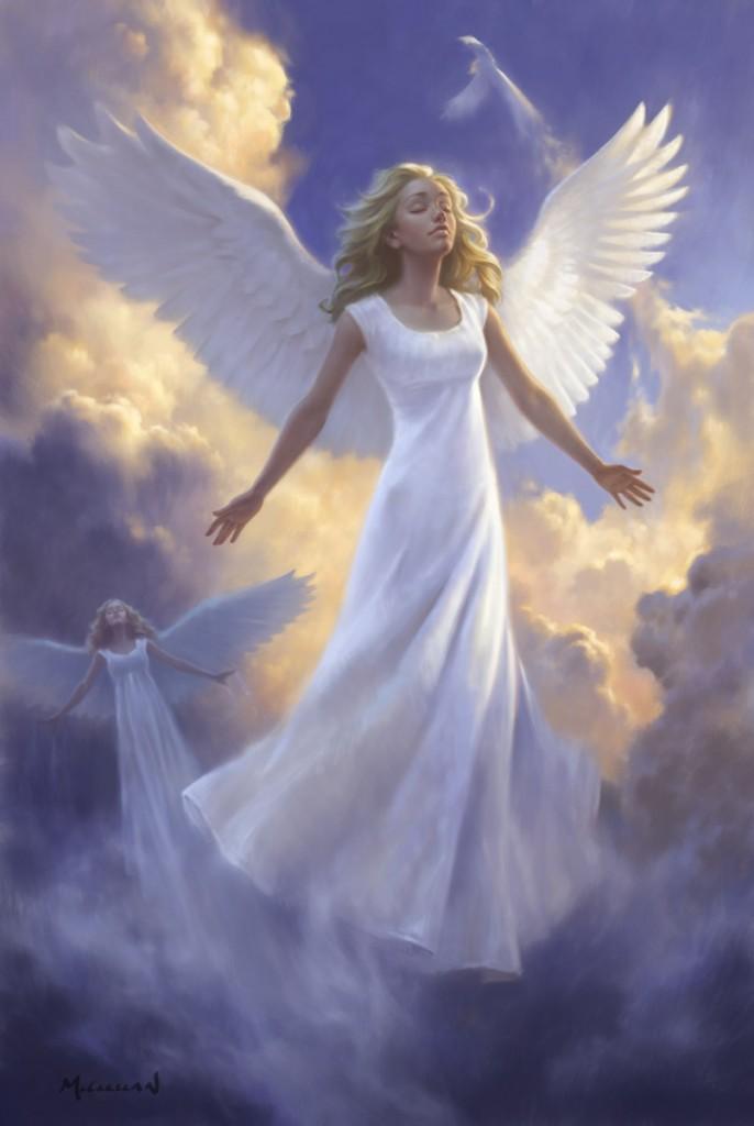 Angels – AQJP