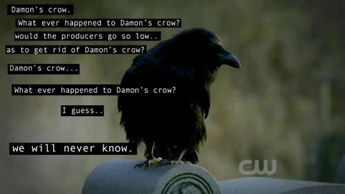 File:Damon-s-crow-damon-and-elena-21744512-500-282.jpg