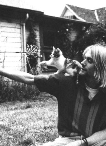 File:Kurt Cobain and his kitten.jpg