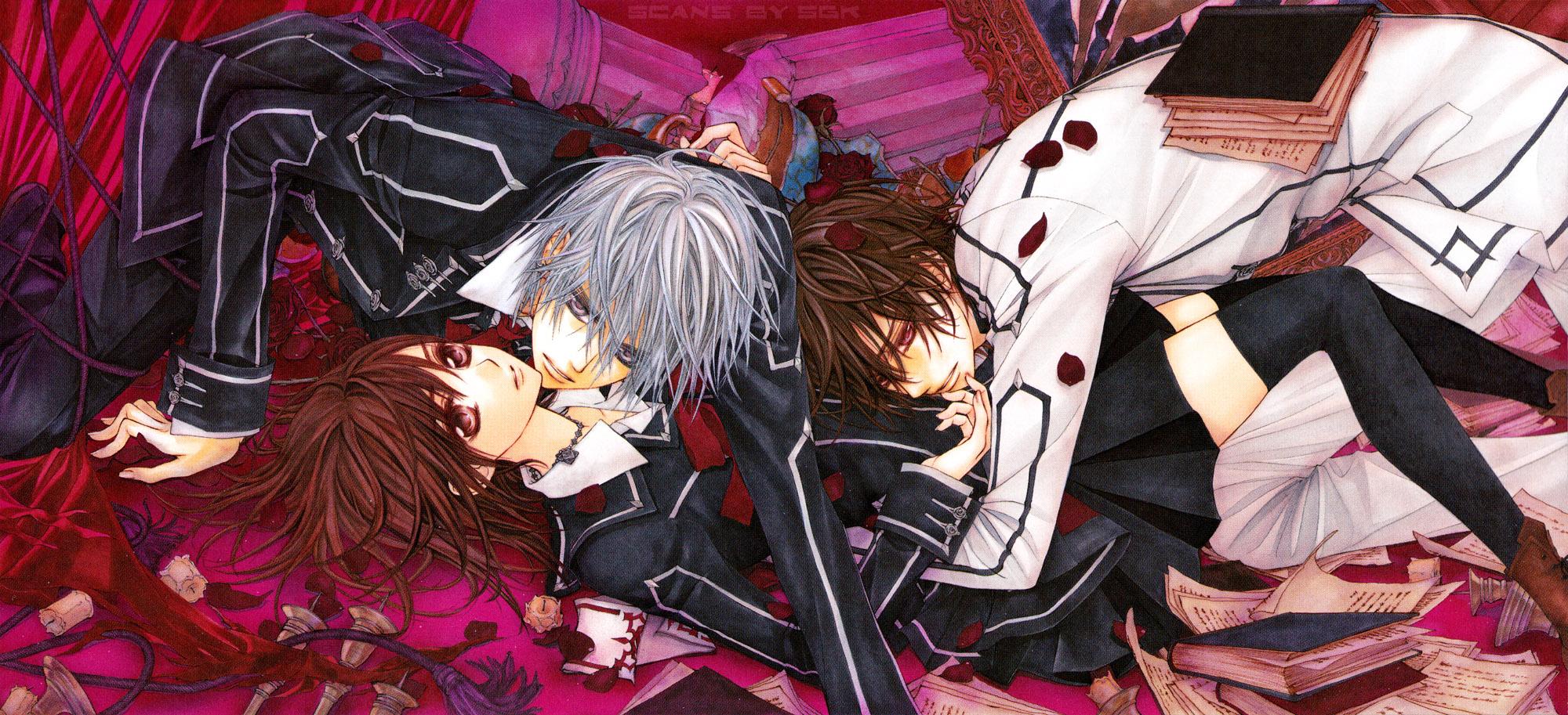 Anime ini adalah salah satu dari sekian banyak anime yang tampaknya lebih terfokus kepada perempuan begitu banyak vampir laki laki yang tamvan