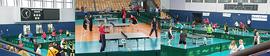 Tischtennis Turnier der Tausende.png