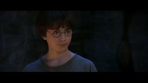 Harry Potter and the Sorcerer's Stone - You're a wizard, Harry