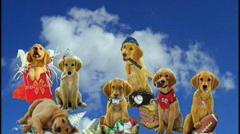 Air Buddies (2006) - Final with Ratings, Parent Reviews