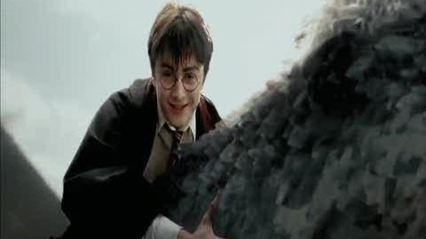 Harry Potter and the Prisoner of Azkaban - King of the world