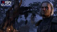 Elder Scrolls Online Guide - How to Level Up Fast