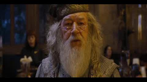 Harry Potter and the Goblet of Fire - The Goblet Of Fire