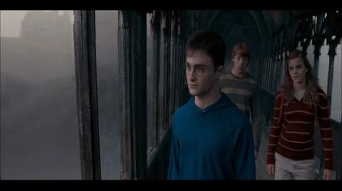 Harry Potter and the Order of the Phoenix - Harry has had enough