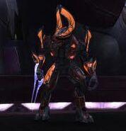 Elite Honor Guardsman