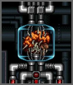Mother Brain (Super Metroid)