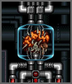File:Mother Brain (Super Metroid).jpg