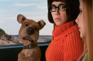 Scrappy and Velma