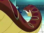 Heavy Anaconda2