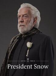 President Snow portrait