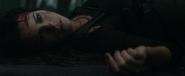 Lori's death