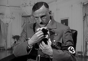 A Kitten for Hitler