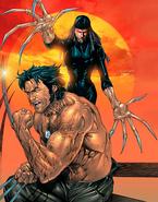 Lady-deathstrike-vs-wolverine