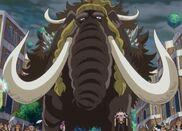 Jack Mammoth Form 1