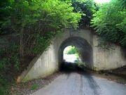 Bunnyman Bridge
