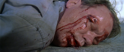 Terry's death 2
