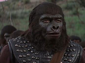 Aldo (Planet of The Apes)