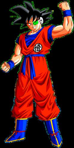 Goku's Body