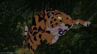 Sabor-(Tarzan)
