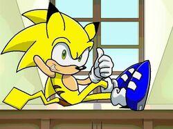 Sonichuthepikahog