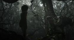 Jungle Book 2016 172