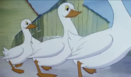 The Gooses