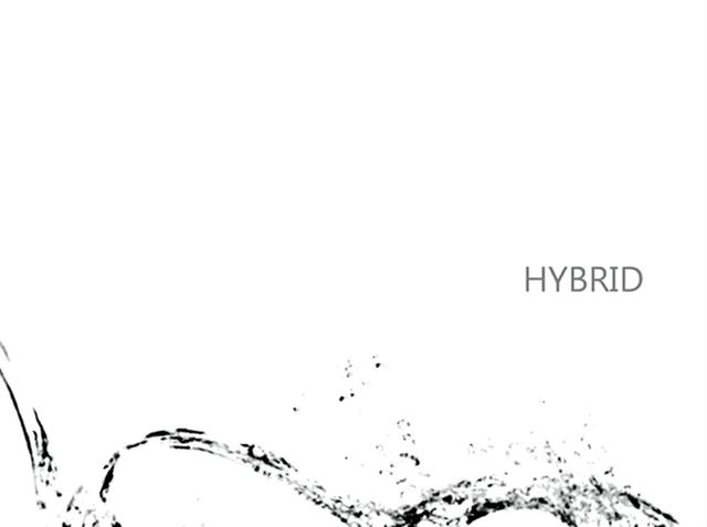 File:HYBRID - niki.png