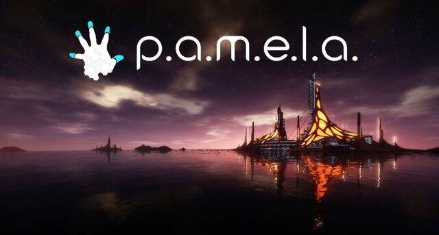 File:Pamela PC cover.jpg