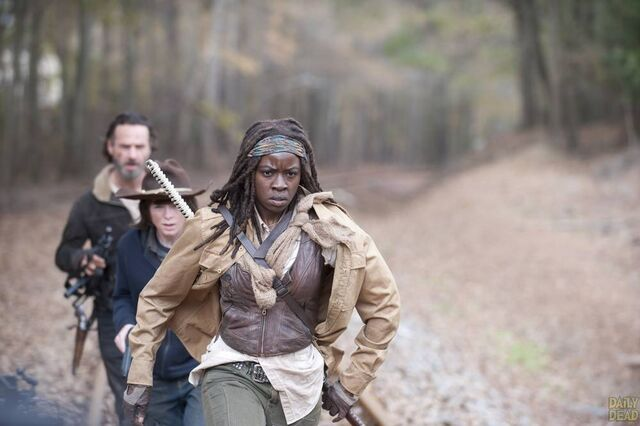 File:Walking-Dead-S4-Finale-07.jpg