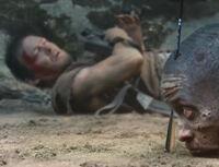 Really Daryl