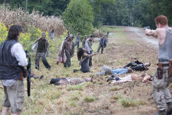 TWD-Episode-411-Main-590