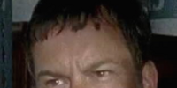 Bruce (TV Series)