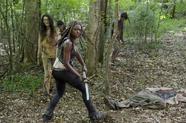 AMC 603 Michonne Woods